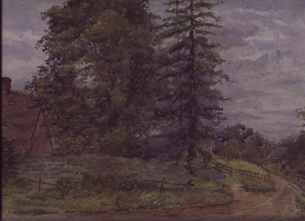 Poplar Corner